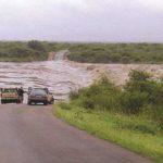 Lower Sabie River
